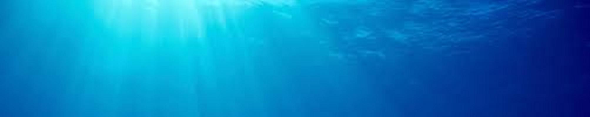 Scuba And Snorkeling Gear
