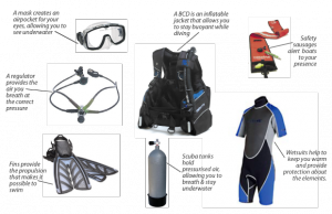 scuba diving gear list what is needed scuba and snorkeling gear
